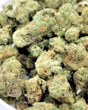 Alien OG Marijuana Strain UK