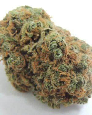 Bob Marley Marijuana Strain
