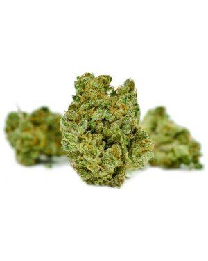 Buy Sheila Cannabis Strain