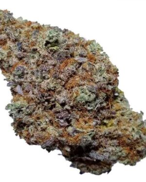 Blackberry Kush Marijuana Strain UK