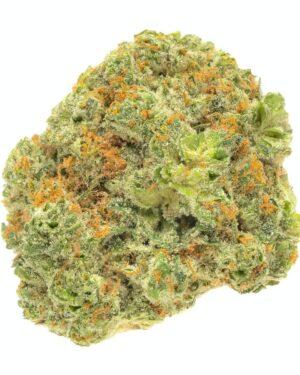 Buy Aloha Marijuana Strain