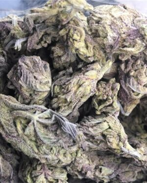 Afghan Purple Kush Strain