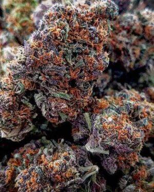 7-Way Marijuana Strain UK