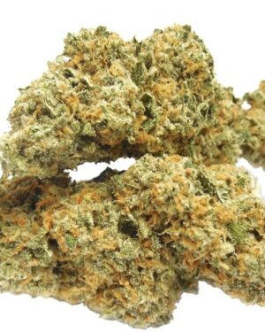 B29 Marijuana Strain