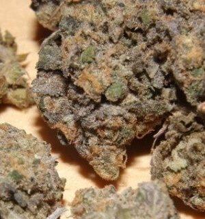 Ackleberry Marijuana Strain